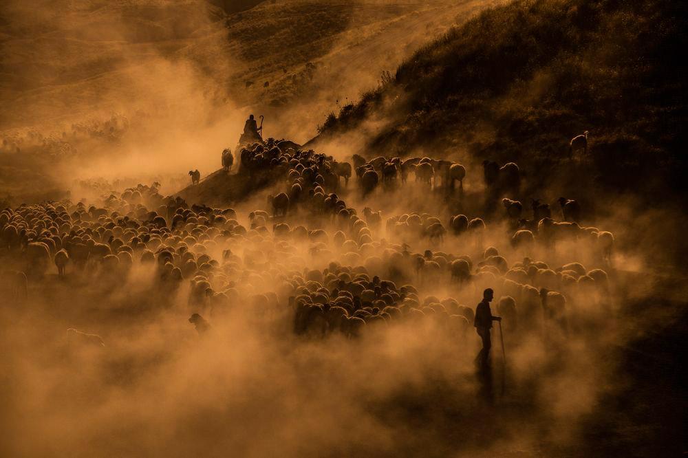 © Erbin Veysel, 1st Award ART-Photography, 35AWARDS Photo Contest