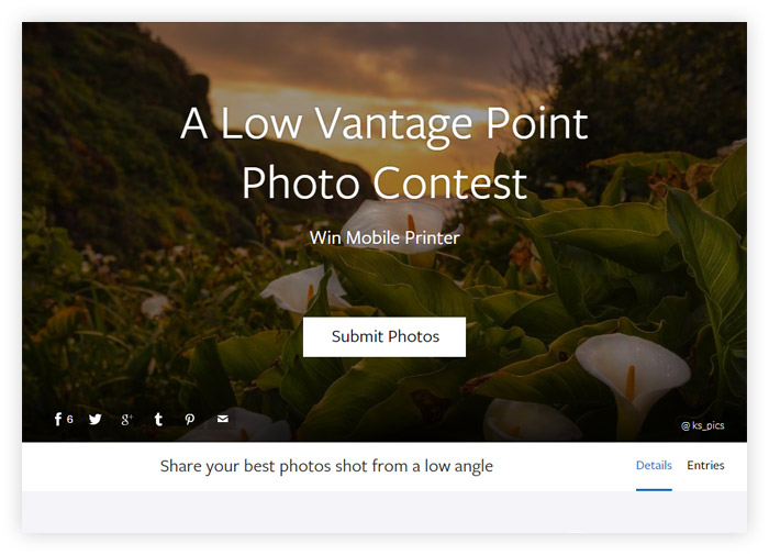 A Low Vantage Point Photo Contest