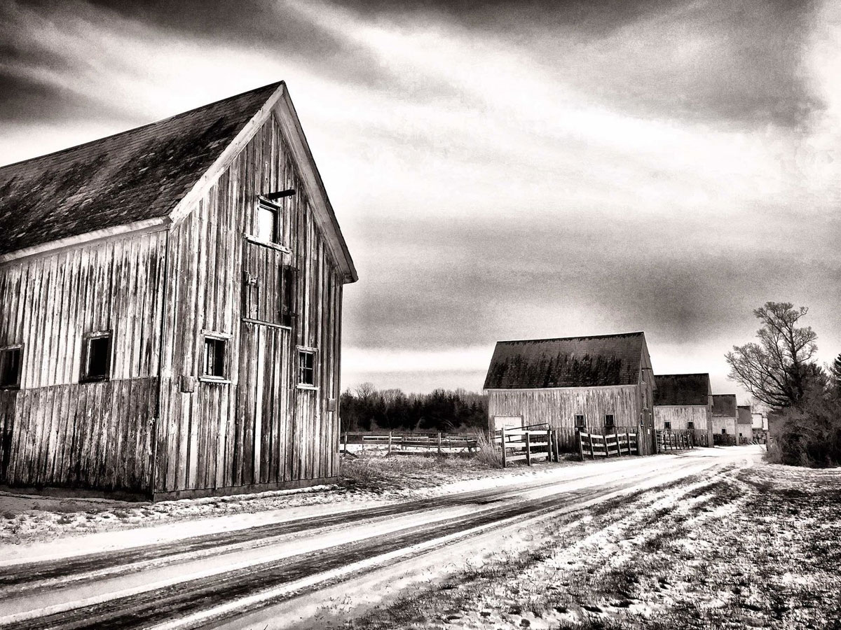Haunted Barns, © Rebekkah Ziel, Fourth Place, All Women Online Art Competition