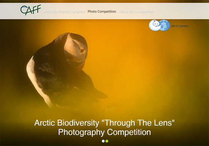Arctic Biodiversity Through the Lens Photography Competition