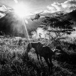 "Winner, ASPAuthor 2018, © Nicola ""okin"" Frioli / Mexico (México), ASPA - Alghero Street Photography Awards"