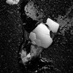 © Tadashi Onishi, Street Photography — Winner (Series), ASPA - Alghero Street Photography Awards