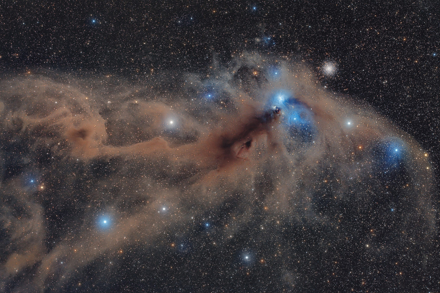 Corona Australis Dust Complex, © Mario Cogo, Stars and Nebulae Winner, Astronomy Photographer of the Year