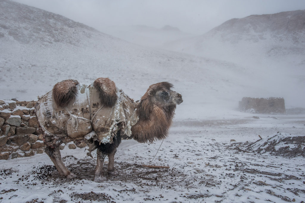 Winter in the Afghan Pamirs, © Beth Wald, 2018 Winner, Mountain Photo Essay Competition by Banff Centre