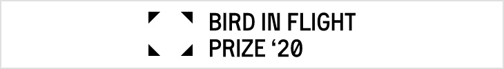 Bird in Flight Prize
