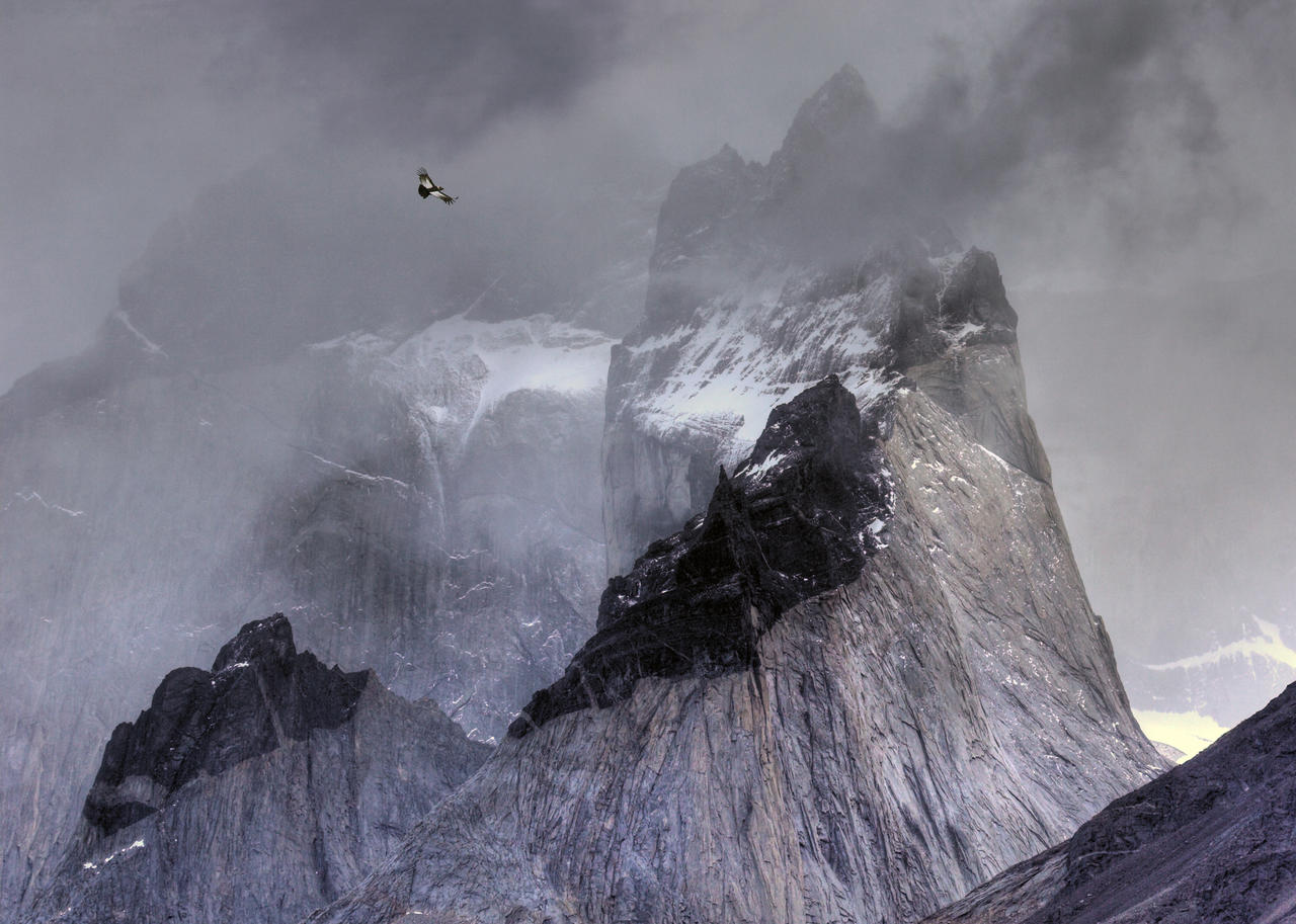 Condor over mountains, © Ben Hall, Gold, Bird Photographer of the Year - BPOTY