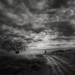 Infrared Silence, © Nathan Wirth, Usa, Honorable Mention, Black & White Photography Awards - Dodho Magazine