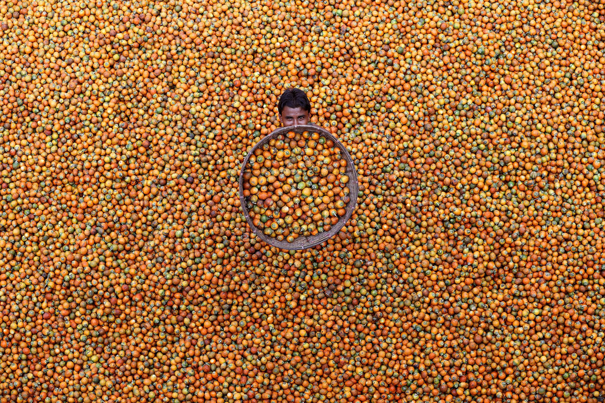 © M Yousuf Tushar, 2018 APAC Winner.Betel Nut, Photo Location: Coxbazar, Bangladesh, CBRE Urban Photographer of the Year