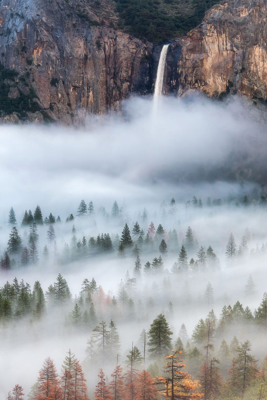 Into the Mist, © Brandon Y, Natural Environment Category, CEPIC Stock Photography Awards