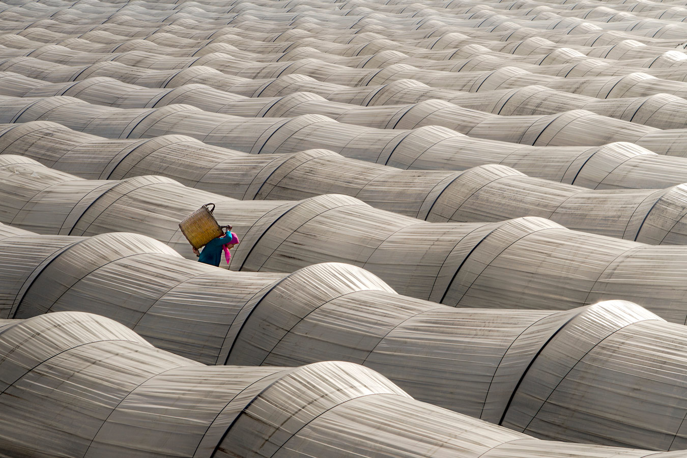Untitled, © Leyla Emektar, Travel the World Category Expert Winner, CEPIC Stock Photography Awards