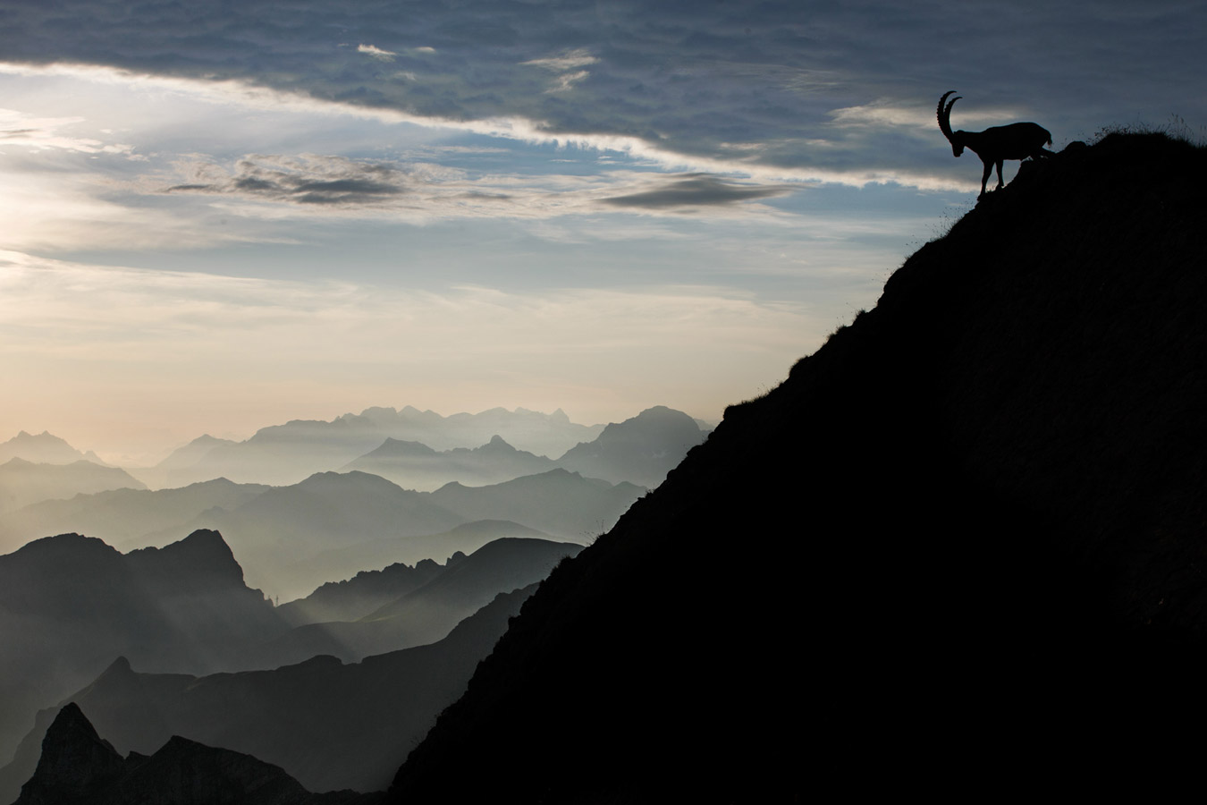 On the Top, © Radomir Jakubowski, Nature, CEWE Photo Award