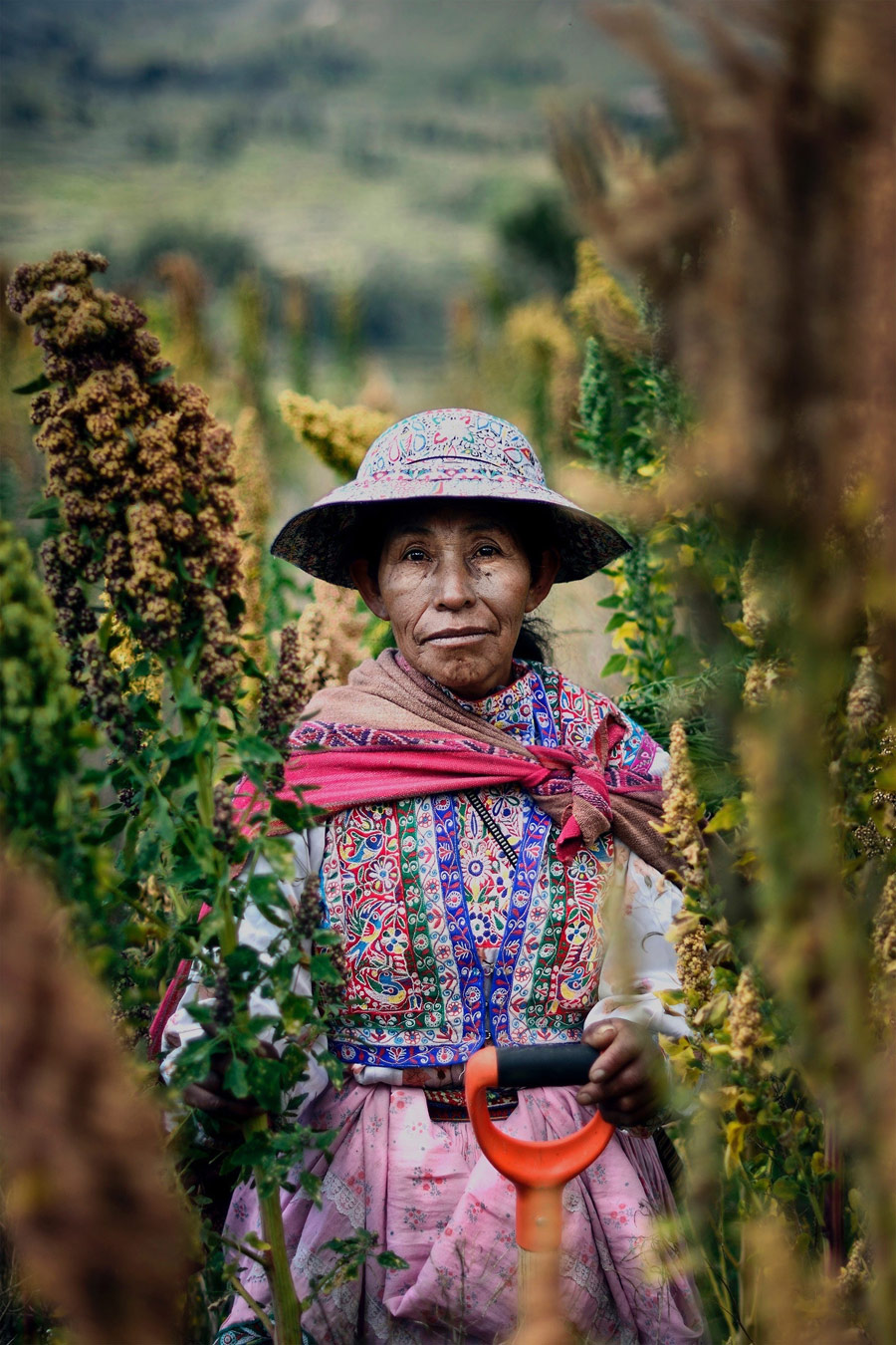 The Quinoa Farmer, © Ana Caroline De Lima, Peru, Honorable Mentions, CGAP Photo and Video Contest
