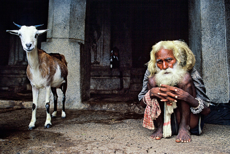 Goat and Hermit, © Mark Coote, New Zealand, 1st Place - Outstanding Achievement, International Color Awards