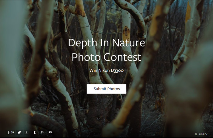 Depth In Nature Photo Contest