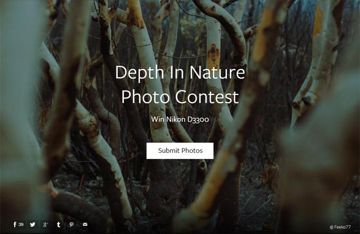 Depth In Nature Photo Contest