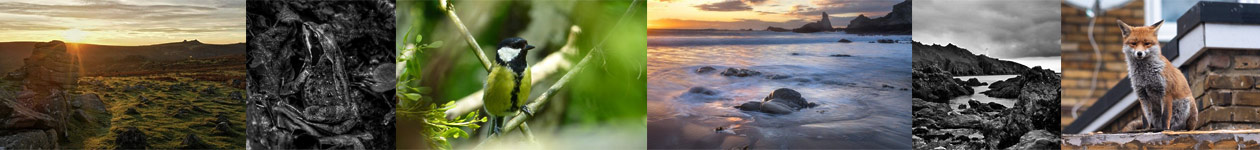 Devon Nature and Landscape Photography Competition