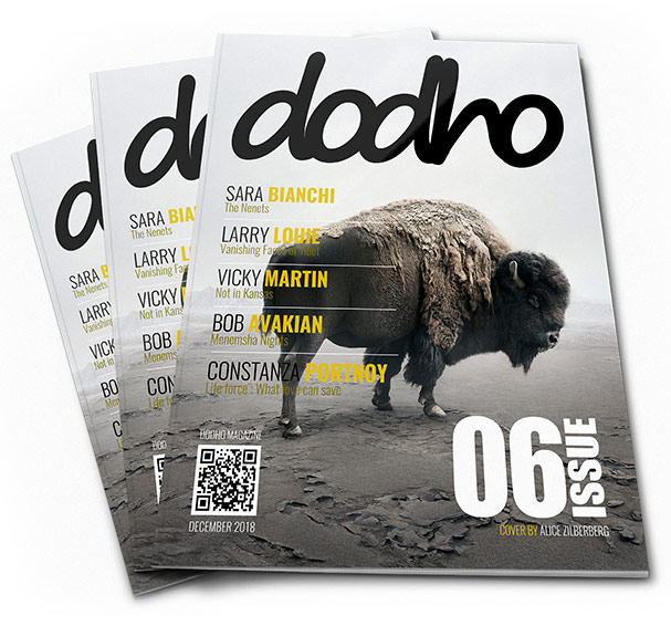 Call for Entries the Dodho Magazine