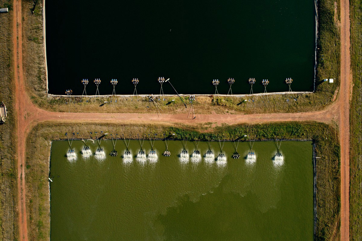 Fish Farm, © foonji, Dronestagram Drone Photography Contest