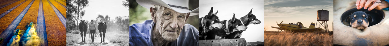 2020 Calendar Competition - Elders Rural Services