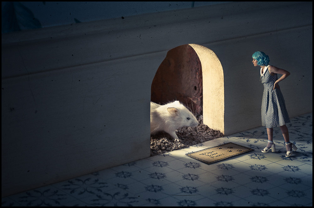 Through the Mouse Hole, © Gavin Smart, 1st Place Winner Open Theme professional, Fine Art Photography Awards