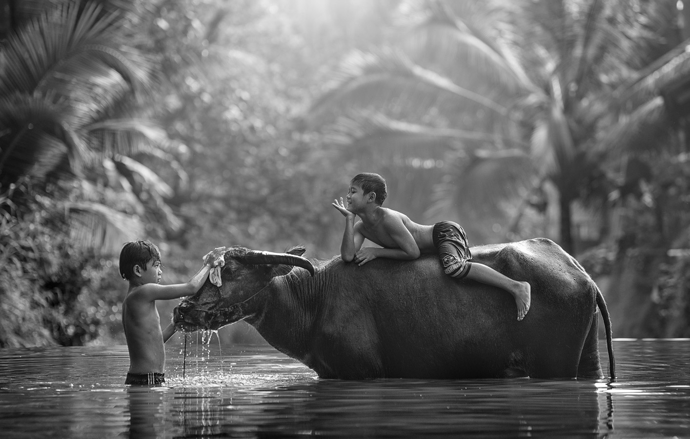 Buffalo Bathing, © Alexandrino Lei Airosa, Honorable Mention, Black & White Art Competition by Fusion Art