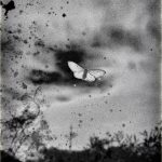 Third Prize Winner, © Fatima Abreu Ferreira, How to disappear completely, Gomma Photography Grant