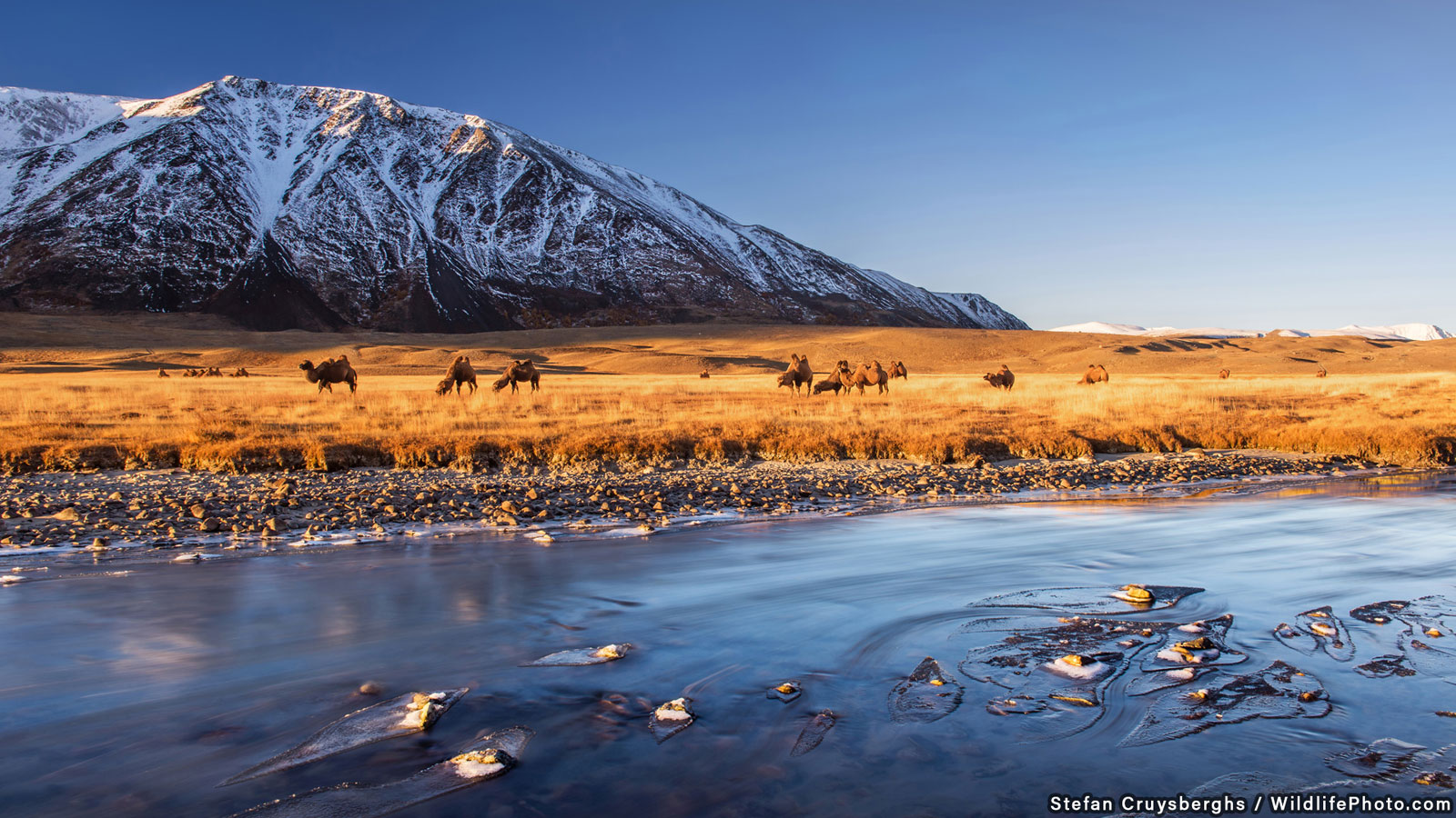 Sunrise in Altai, © Stefan Cruysberghs, Runner-Up, Habitats & Landscapes Photo Contest
