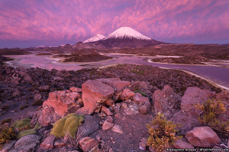 Pink Eruption, © Alessandro Gruzza, Runner-Up, Habitats & Landscapes Photo Contest