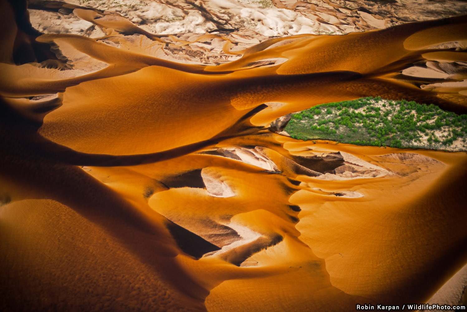 Sand-choked, © Robin Karpan, Highly Commended, Habitats & Landscapes Photo Contest