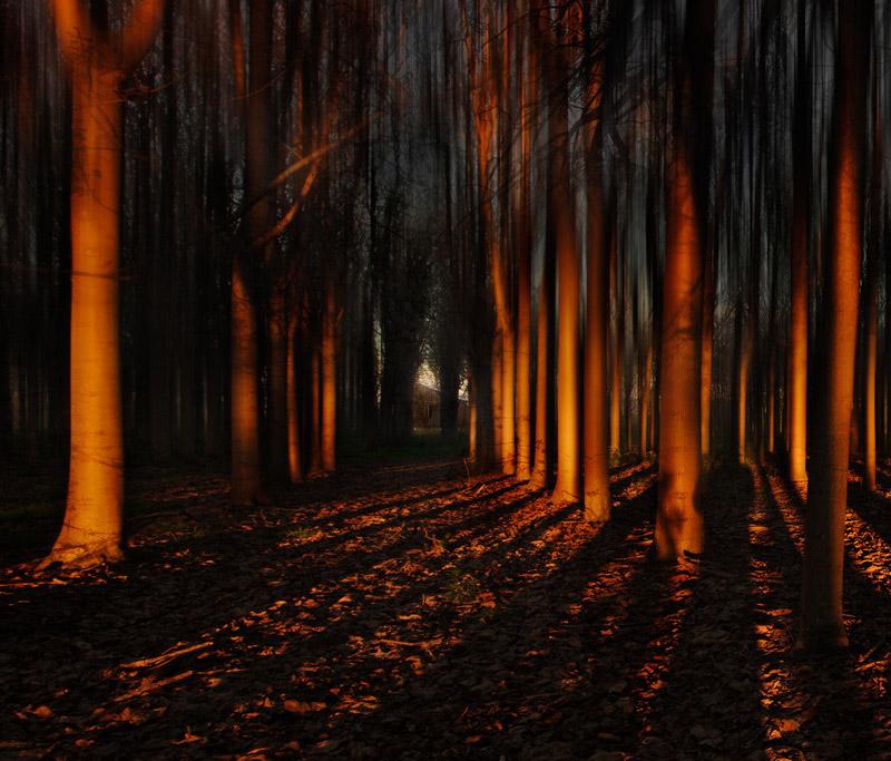 Portrait of my shadow, © Federico Rekowski, Landscape Winner, Head On Photo Awards