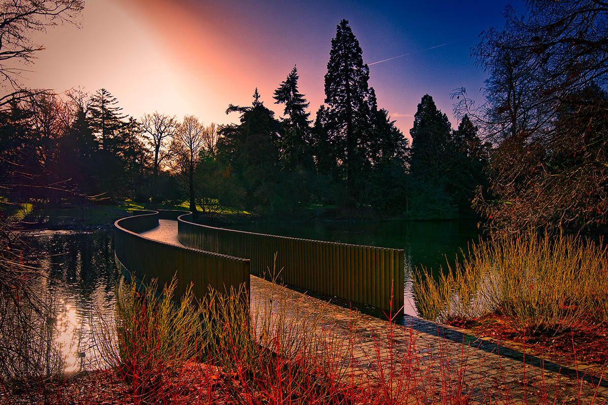The Sackler Crossing, © Zygmunt Szot, 1st place, International Garden Photographer of the Year — IGPOTY