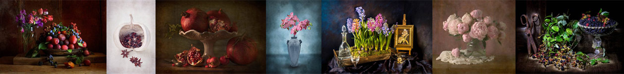 Still Life Competition - International Garden Photographer of the Year