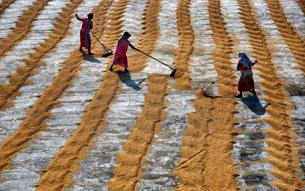 Women at Work, © Avishek Das, 2nd Runner-up, InterAction's Photo Contest