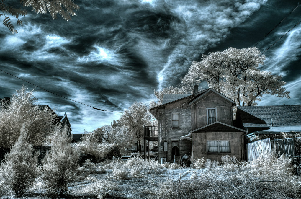 © Geoff Decker, Life in Another Light Infrared Photography Contest