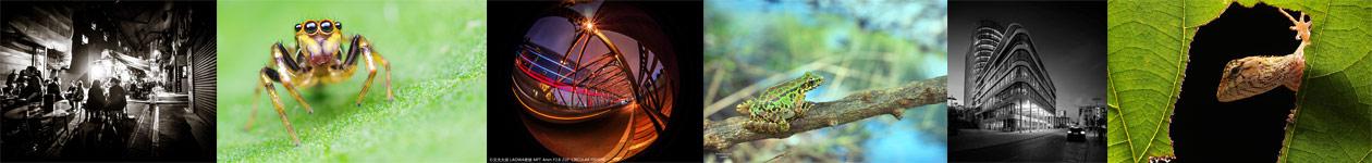 Laowa Photo Contest – LAOWA Camera Lenses