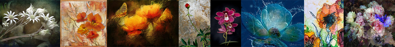 Botanicals Art Competition - Light Space & Time Art Gallery