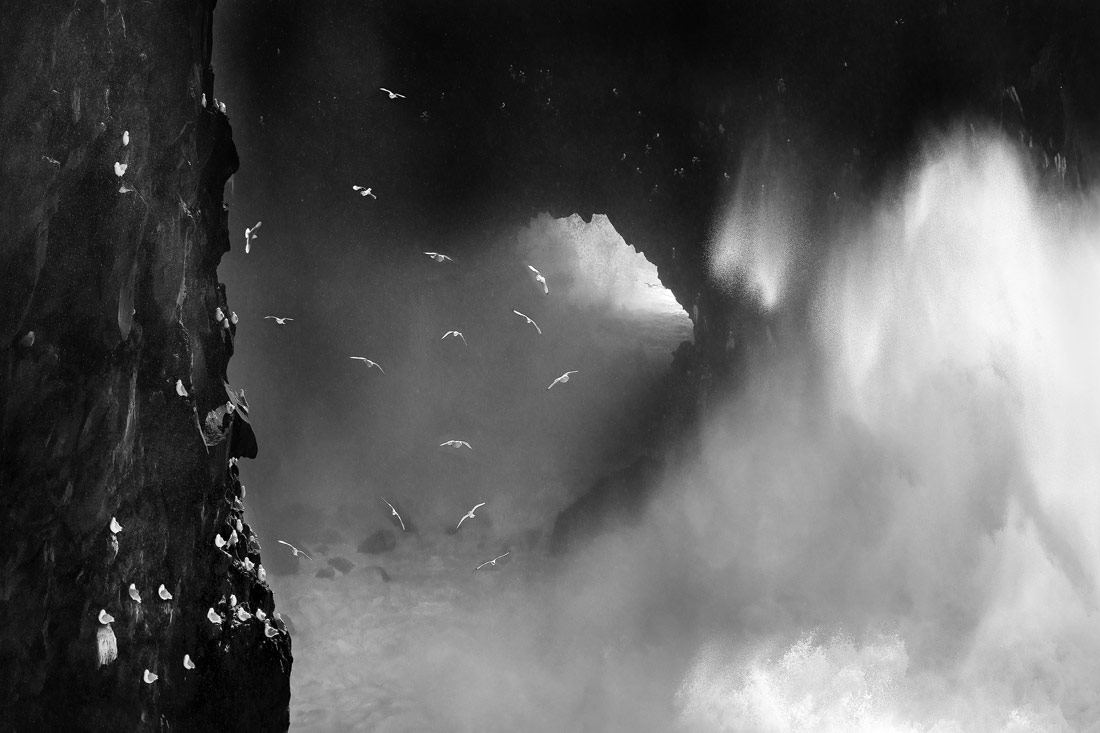Ocean Fury, © Romain Tornay, 1st Place - Black & White Nature And Wildlife Photo of the Year 2018, MonoVisions Photography Awards