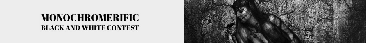 MONOCHROMERIFIC Black and White Contest - More Art Please