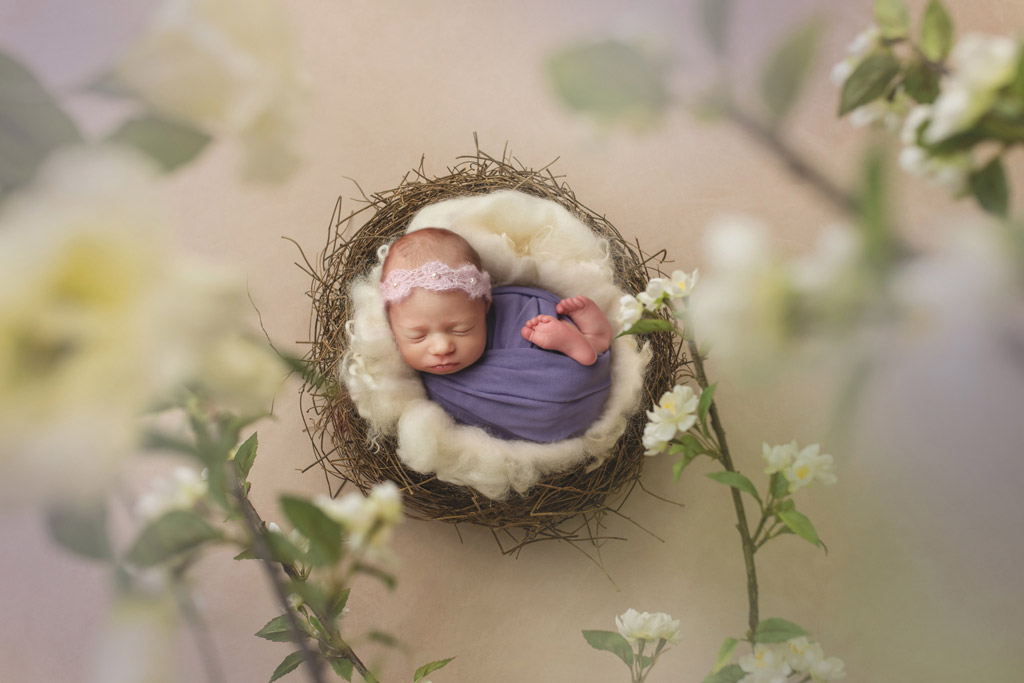 White Blossoms, © Natasha Dewing, Canada, Newborns Photo Contest