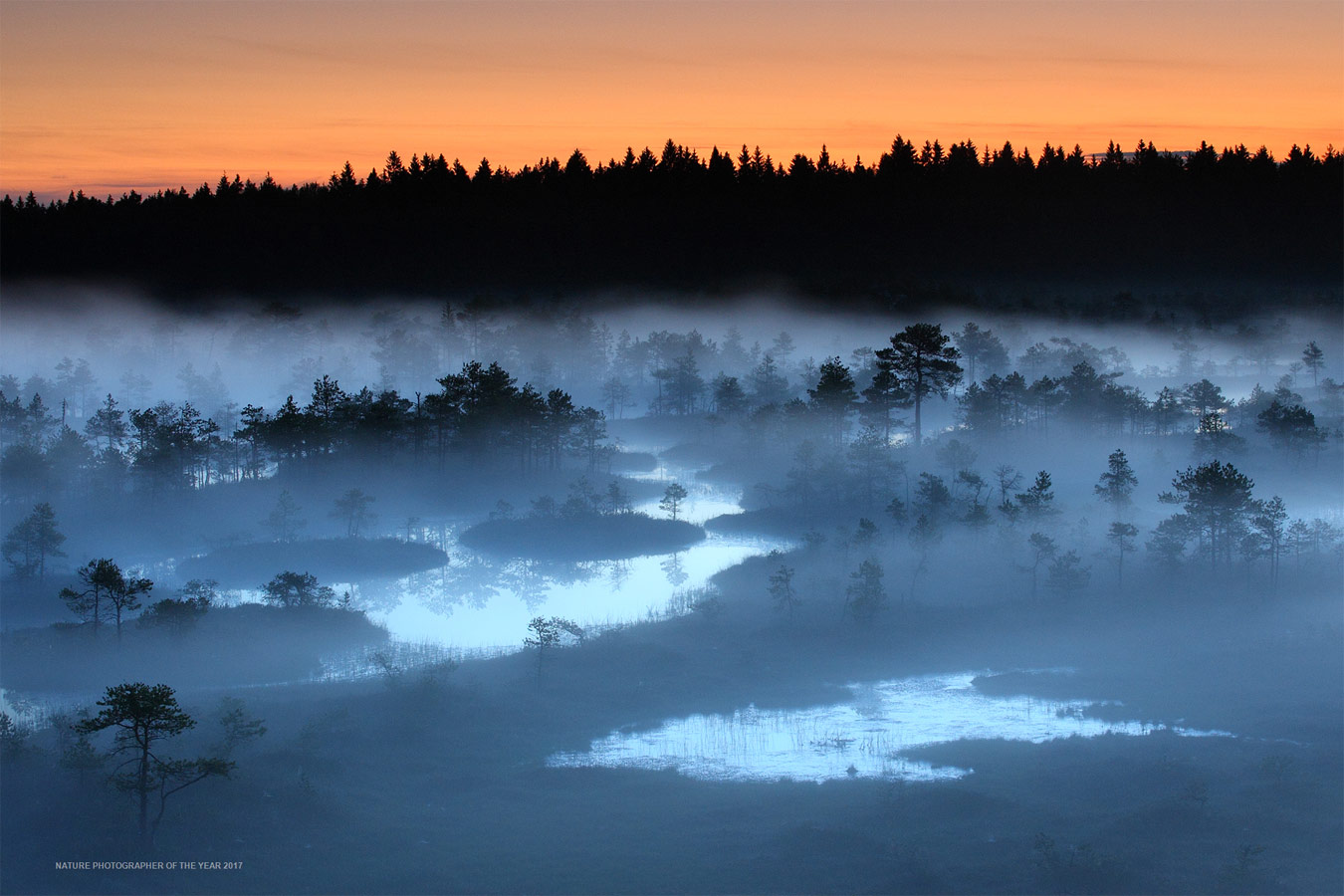Early morning in the bog, © Remo Savisaar, Winner by Category C5 - Landscapes, Nature Photographer of the Year
