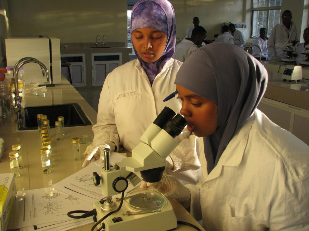 Two female veterinarians performing tick identifcation at IGAD Sheikh Technical Veterinary School(ITSVS) diagnostic laboratory, Somalia, © Mohamed Said Abdulle, Africa 2018 Winner, Animal health and welfare, beyond the cliché Photo Competition by OIE