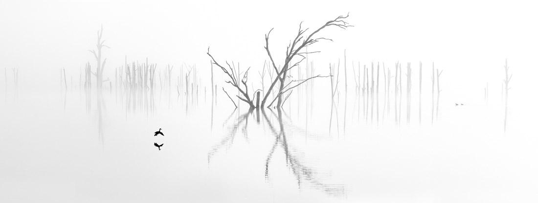Incoming, Lake Windamere NSW Australia, © Ray Jennings, Australia, Amateur Award Winner – Nature / Landscape, EPSON International Pano Awards