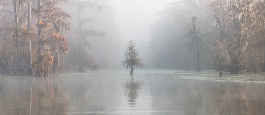 Misty Bayou, Lake Martin, Louisiana, United States, © Roberto Marchegiani, Italy, 2018 Carolyn Mitchum Award Winner 3rd Place, EPSON International Pano Awards