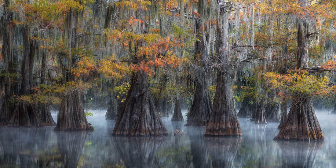 © David Thompson, Highest Scoring Stiched Image, EPSON International Pano Awards