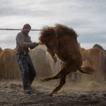 Seasons In Mongolia, © Dimitri Staszewski, Philadelphia, PA, United States, Amateur : Portraits, Perspectives PhotoPlus Expo Annual Photography Contest