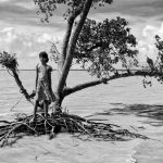 The Hungry Tide Project, © Swastik Pal, 3rd Place Climate Category Winner, International Photography Grant