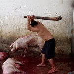 Slaughterhouse, © Aitor Garmendia, 3rd Place Daily Life Category Winner, International Photography Grant