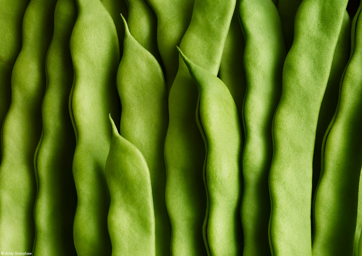 Green Beans, © Andy Grimshaw, United Kingdom, 1st Place, One Vision Imaging Cream of the Crop, Pink Lady Food Photographer of the Year