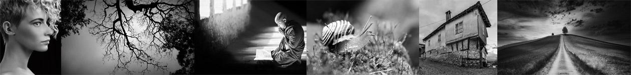 Black and White Photo Challenge - PIXUP