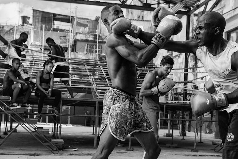 Boxing club Havana, Edgard De Bono, Recreational Sports, Pictures of the Year International — POY
